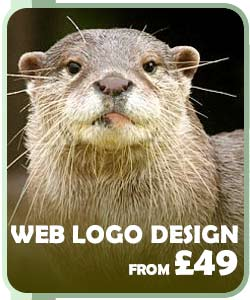 Web logo design from £49